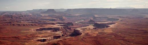 canyonlands绿色俯视河 图库摄影