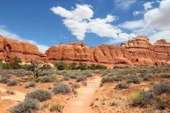 canyonlands Юта Стоковые Изображения RF