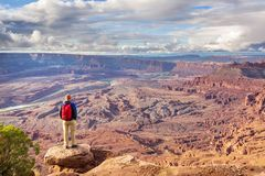 Canyonlands royaltyfri foto