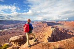 Canyonlands royaltyfria bilder