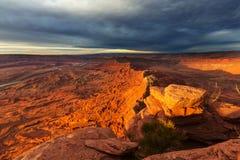 Canyonlands 图库摄影