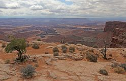 Canyonlands Cliff Edge stockbilder