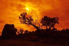 Canyonlands II Lizenzfreies Stockbild