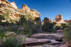 canyonlands krajowy igieł park Zdjęcia Royalty Free