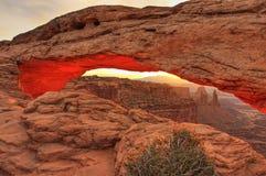 曲拱canyonlands mesa日出 免版税图库摄影