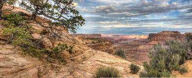 Canyonlands Nationaal Park Stock Afbeeldingen