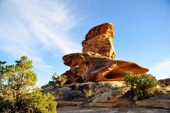 Canyonlands Nationaal Park Stock Afbeelding