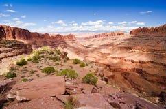 Canyonlands Nationaal Park buiten Moab, UT Stock Foto's