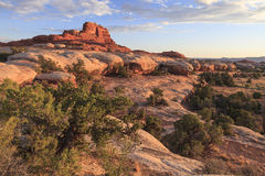 Canyonlands National Park Needles District Stock Photography