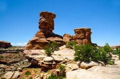 Canyonlands National Park in Southeastern Utah - The Needles Stock Images