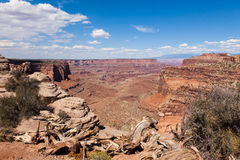 Canyonlands national park in Utah Royalty Free Stock Photography
