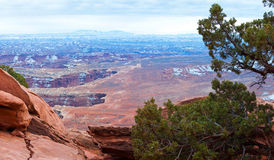 Canyonlands National Park in Winter Royalty Free Stock Images