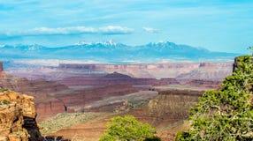 Canyonlands National Utah Royalty Free Stock Images