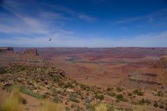 Canyonlands Nationalpark Stockfoto
