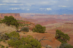 Canyonlands nationalpark Arkivfoton