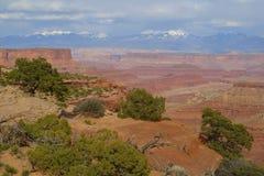 Canyonlands nationalpark Arkivfoton