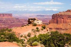 canyonlands park narodowy Fotografia Stock