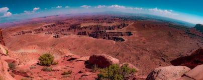 canyonlands utah royaltyfri fotografi