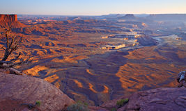 Canyonlands wide view from Green River Overlook. Looking down on rugged desert terrain in afternoon light with cliffs, mesas and buttes in the background. Dead royalty free stock photography
