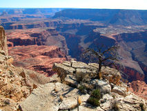 Canyons of eternity. Grand Canyon view Royalty Free Stock Images