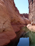 Canyons in Lake Powell of Lake Powell. Stock Image