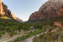 Canyons Landscape Zion Park Royalty Free Stock Images