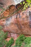 Canyons in the State of Utah. Hurricane, Utah, USA - June 3, 2015: A group of tourists, at sunset, follow the Emerald Poos Trail through the Zion National Park Royalty Free Stock Image