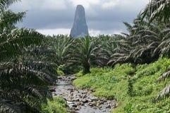 Cao Grande, Sao Tome, Afrika Stockfoto