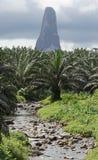 Cao Grande, Sao Tome, Afrika Lizenzfreie Stockbilder