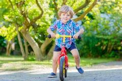 Caçoe o menino que conduz o triciclo ou a bicicleta no jardim Fotografia de Stock