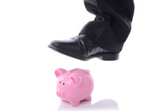 Stomp on piggy bank. Caoncep of breaking into saving or money problems Stock Image