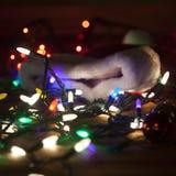 Caos entre a época natalícia Imagens de Stock