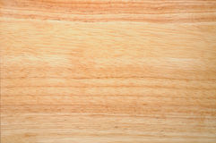 Caoutchouc wood Royalty Free Stock Photo