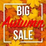 Capítulo con el texto grande de Autumn Sale en fondo de las hojas de arce Fotografía de archivo