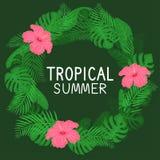 Capítulo con la flor, las hojas y la planta tropicales stock de ilustración