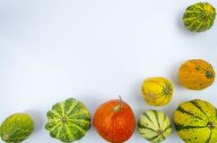 Capítulo con las calabazas en una tabla de madera, calabazas coloreadas, otoño Imágenes de archivo libres de regalías