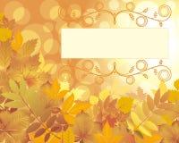 Capítulo con las hojas Fotografía de archivo libre de regalías