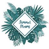 Capítulo con las hojas de palma tropicales Fondo exótico verde con el lugar del rombo para el texto Foto de archivo