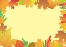 Capítulo con las hojas del rojo y del amarillo Foto de archivo libre de regalías