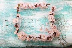 Capítulo con las ramas florecientes en el tablero de madera Imagenes de archivo