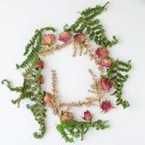 Capítulo con las rosas y las ramas aisladas en el fondo blanco Imagen plana del diseño con la visión superior Foto de archivo libre de regalías