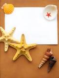 Capítulo con los seashells Imagen de archivo
