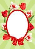 Capítulo con los tulipanes rojos y blancos Flores y brotes realistas hermosos Foto de archivo