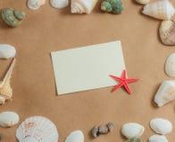 Capítulo de conchas marinas en fondo ligero con la tarjeta en blanco y las estrellas de mar Visión plana Imagen de archivo libre de regalías