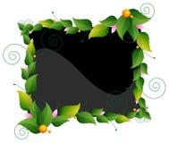 Capítulo de hojas y de flores Foto de archivo libre de regalías