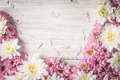 Capítulo de la flor blanca y rosada en la opinión de sobremesa de madera blanca Foto de archivo libre de regalías