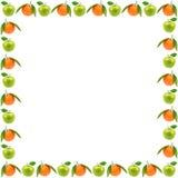 Capítulo de las frutas frescas aisladas en el fondo blanco Manzanas y o foto de archivo libre de regalías