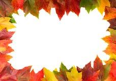 Capítulo de las hojas de otoño Imagen de archivo