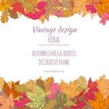 Capítulo de las hojas y de las bayas de otoño Foto de archivo