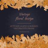 Capítulo de las hojas y de las bayas de otoño Fotos de archivo